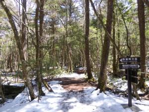 残雪・富士山のふもとでしごかれました